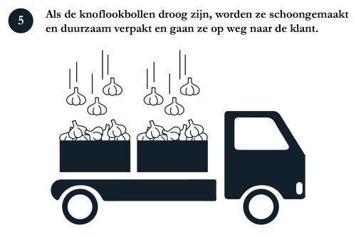 5. Verpakken en transport-100 v2